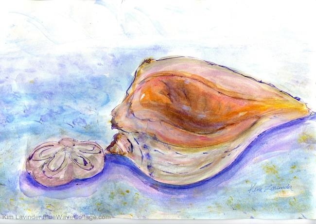 Sea Biscuit and Whelk